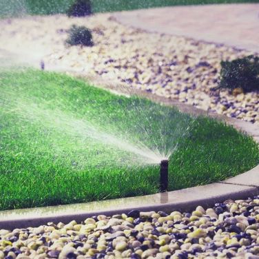 Close up of an irrigation sprinkler watering green grass
